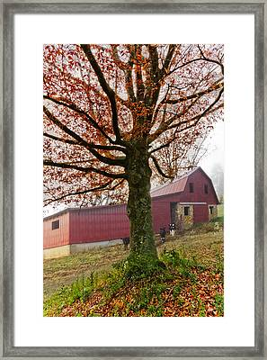 Mountain Dairy Farm Framed Print by Debra and Dave Vanderlaan