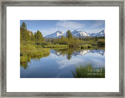 Mountain Daydream Framed Print by Idaho Scenic Images Linda Lantzy