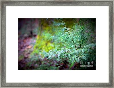 Mountain Fauna Framed Print