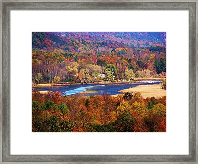 Mountain Foliage Series 009 Framed Print