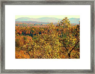 Mountain Foliage Series 012 Framed Print