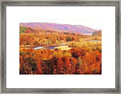 Mountain Foliage Series 023 Framed Print