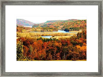 Mountain Foliage Series 033 Framed Print