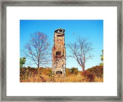 Mountain Foliage Series 041 Framed Print