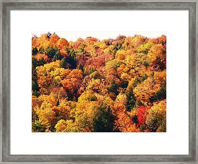Mountain Foliage Series 054 Framed Print