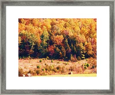 Mountain Foliage Series 057 Framed Print