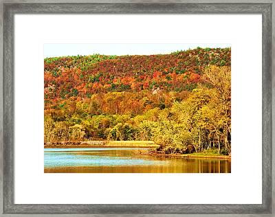 Mountain Foliage Series 067 Framed Print