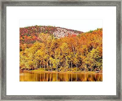 Mountain Foliage Series 068 Framed Print