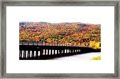 Mountain Foliage Series 071 Framed Print