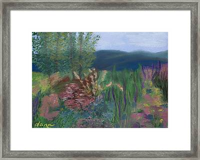 Mountain Garden Framed Print by Dana Strotheide