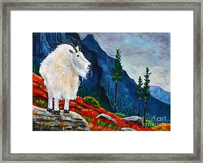 Mountain Goat Country Framed Print by Harriet Peck Taylor