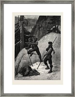 Mountain Goat Hunting In British Columbia Framed Print