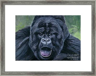 Mountain Gorilla Framed Print