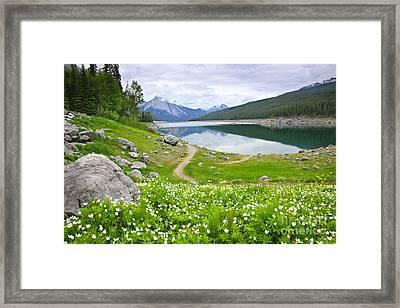 Mountain Lake In Jasper National Park Canada Framed Print by Elena Elisseeva