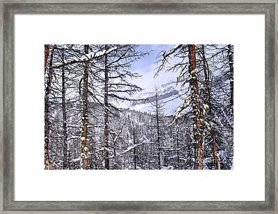 Mountain Landscape Framed Print by Elena Elisseeva