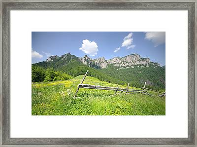 Mountain Landscape  Framed Print by Ioan Panaite