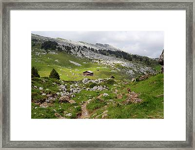 Mountain Landscape Framed Print by Michael Szoenyi