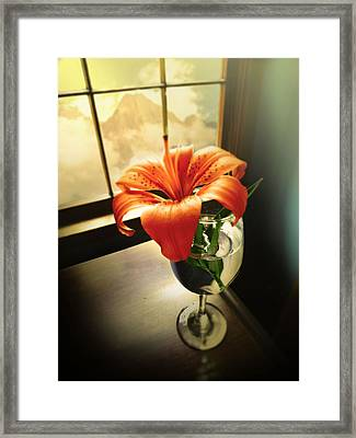 Mountain Lily Framed Print