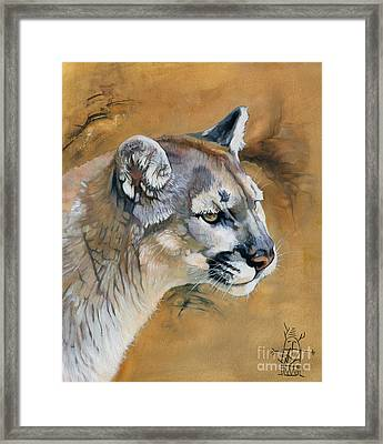 Mountain Lion Framed Print by J W Baker