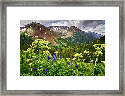 Mountain Majesty Framed Print by Priscilla Burgers