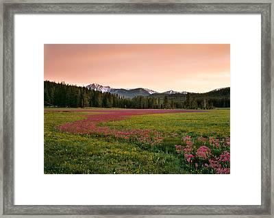 Mountain Meadow Color Framed Print