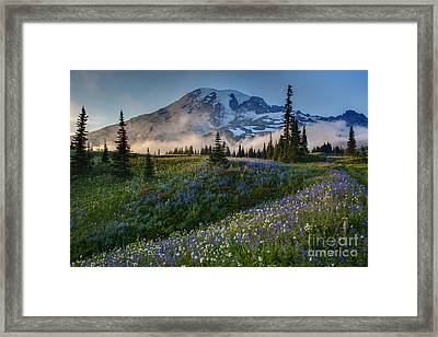 Mountain Meadow Serenity Framed Print