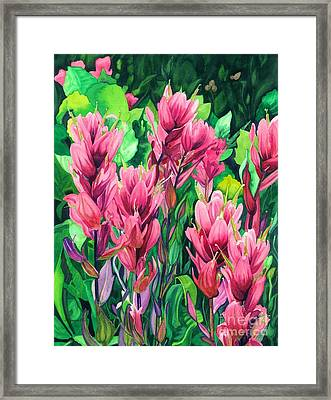 Mountain Meadows' Paintbrush Framed Print