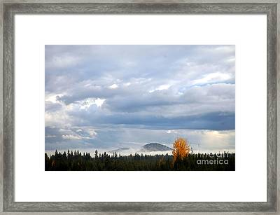 302p Mountain Mist Framed Print