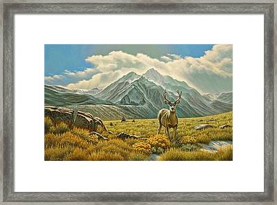 Mountain Muley Framed Print by Paul Krapf