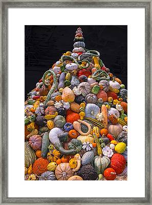 Mountain Of Gourds And Pumpkins Framed Print by Garry Gay