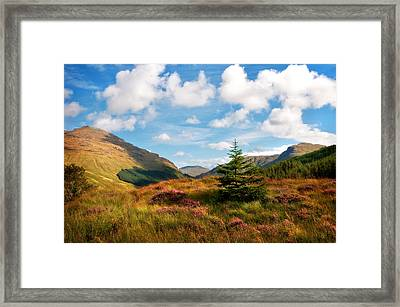 Mountain Pastoral. Rest And Be Thankful. Scotland Framed Print by Jenny Rainbow
