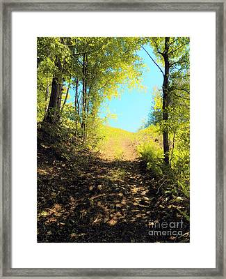Mountain Path Framed Print by Judy Via-Wolff