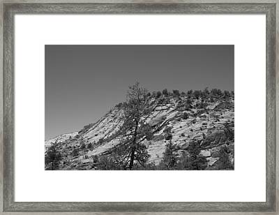 Mountain Path Framed Print by Kimberly Oegerle