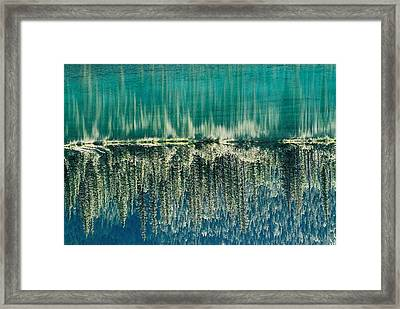 Mountain Pond Framed Print by Gerry Bates