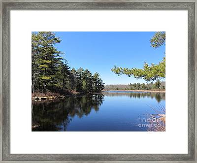 Mountain Pond - Pocono Mountains Framed Print by Susan Carella