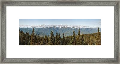 Mountain Range, Olympic Mountains Framed Print