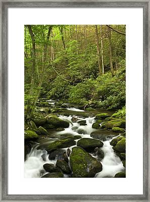 Mountain Rapids Framed Print by Andrew Soundarajan