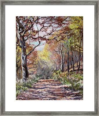 Mountain Road- Sugar Run Mountain In Autumn Framed Print by Bonnie Mason