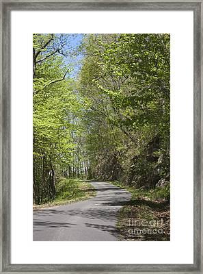 Mountain Road Framed Print by Teresa Mucha