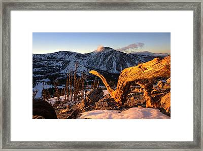 Mountain Snake Framed Print by Peter Thoeny