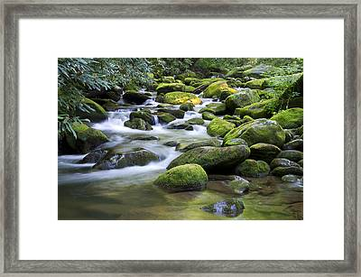 Mountain Stream 1 Framed Print
