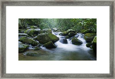 Mountain Stream 2 Framed Print