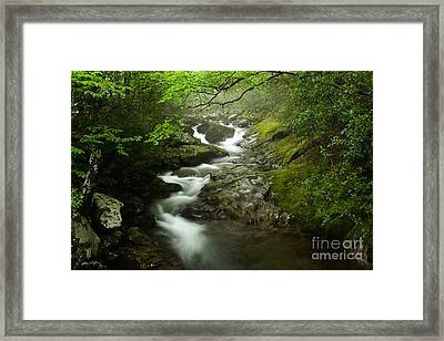 Mountain Stream 2010 Framed Print
