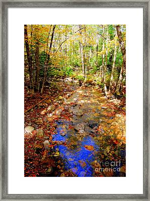Mountain Stream Covered With Fall Leaves Framed Print by Eunice Miller