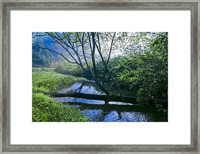 Mountain Stream Framed Print by Debra and Dave Vanderlaan