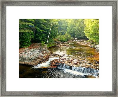 Framed Print featuring the photograph Mountain Stream by Elaine Franklin