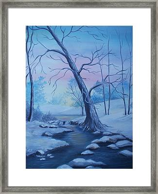 Mountain Stream  Framed Print by Glenda Barrett