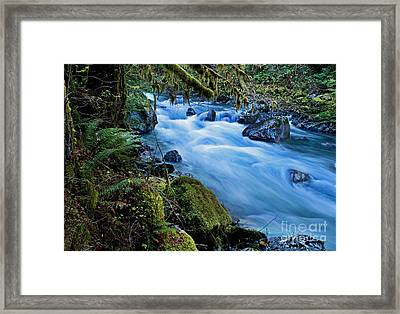Mountain Stream In Forest - Nooksack River Washington Framed Print by Valerie Garner