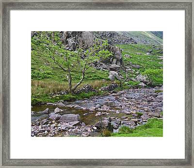 Mountain Stream Framed Print by Jane McIlroy