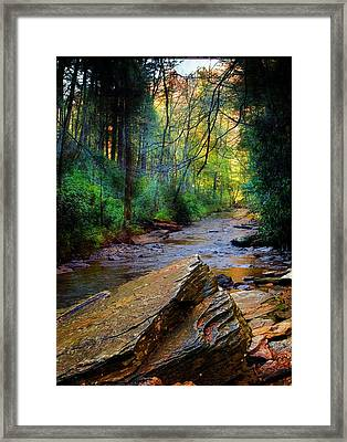 Mountain Stream N.c. Framed Print